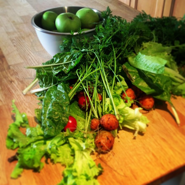 Juice as much veg as you can find!!