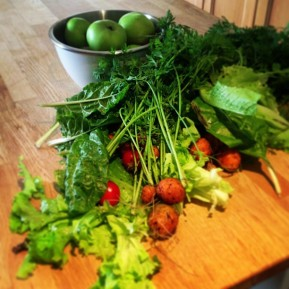 Whole30, being Sick and a General Paleo Disaster….